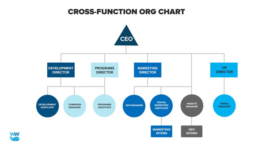 cross-function-org-chart